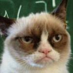 Grumpy Prof