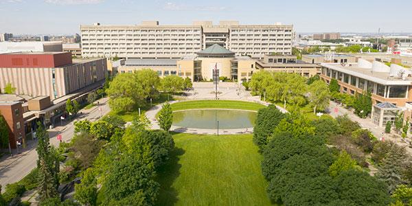 virtual campus york university tours in ontario