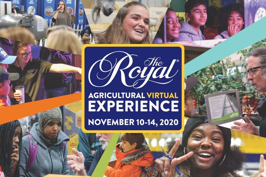 6 Reasons You Should Attend the Virtual Royal Agricultural Winter Fair